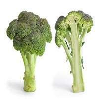 Broccoli Manufacturers
