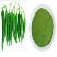 Dehydrated Green Chilli Powder Manufacturers