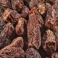 Dry Dates Manufacturers