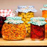 Food Preservative Importers