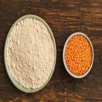 Lentil Flour Manufacturers
