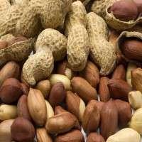 Peanut Manufacturers