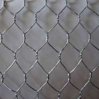 Hexagonal Wire Mesh Manufacturers