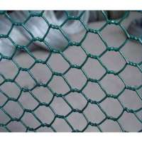 Chicken Wire Mesh Manufacturers