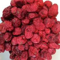 Dehydrated Cranberries Manufacturers