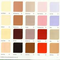 Paint Shade Card Manufacturers