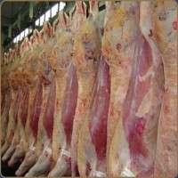 屠宰的肉 制造商