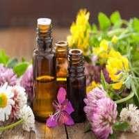 Aromatherapy Oils Manufacturers