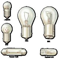 Car Bulb Manufacturers