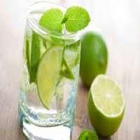绿色柠檬饮料 制造商