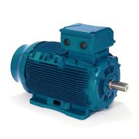 Energy Efficient Motor Manufacturers