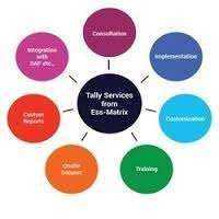 Tally Integration Software Manufacturers
