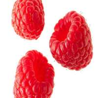 Raspberry Manufacturers