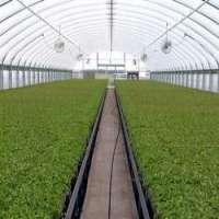农业温室 制造商