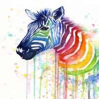 动物绘画 制造商