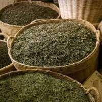 绿茶预混料 制造商