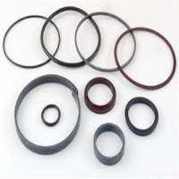 Cylinder Seal Kits Manufacturers