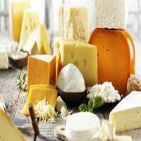 Processed Dairy Product Manufacturers