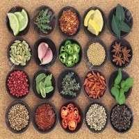 Food Seasoning Manufacturers