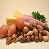 Dietary Proteins Manufacturers