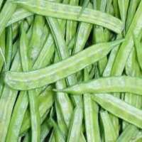 Cluster Beans Manufacturers