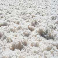 Greasy Wool Manufacturers