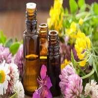 Essential Oils Manufacturers