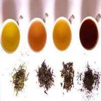 Tea Flavour Manufacturers