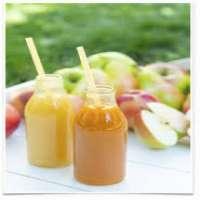 水果花蜜 制造商