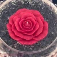 漂浮玫瑰蜡烛 制造商