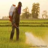 Organophosphorus Insecticides Manufacturers