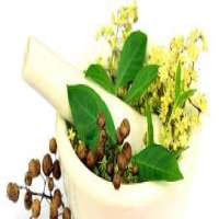 Siddha Medicines 制造商