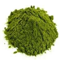 绿茶叶子粉末 制造商