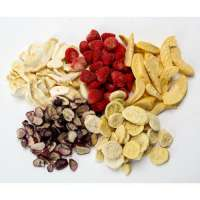 Frozen Dried Fruit Manufacturers