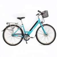 Electric Bike Importers