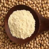 Soya Powder Manufacturers