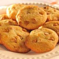 Orange Cookies Manufacturers