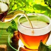 锡兰茶 制造商