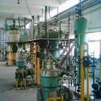 食用油植物 制造商