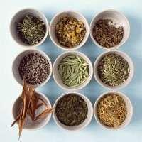 药用凉茶混合物 制造商