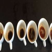Coffee Flavor Manufacturers