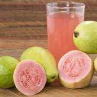 Guava Flavour Manufacturers