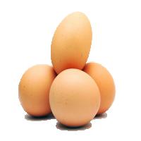 棕色鸡蛋 制造商