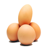Brown Eggs Manufacturers