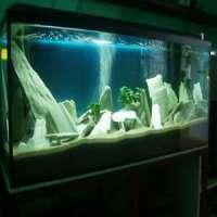 Aquarium Decoration Manufacturers