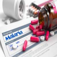 Antimalarial Drugs Importers