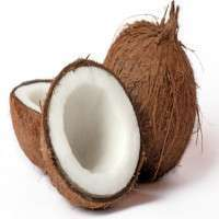 Semi Husked Coconut Manufacturers