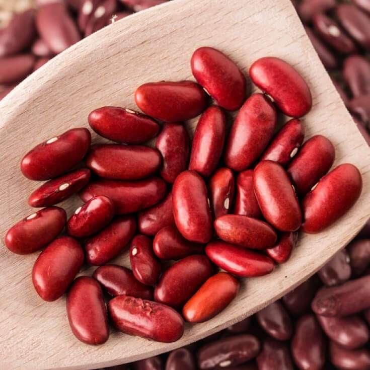收获芸豆 制造商