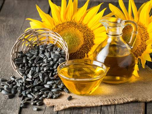 Harvesting Sunflower Oil Manufacturers