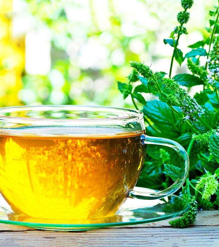 健康减肥茶 制造商
